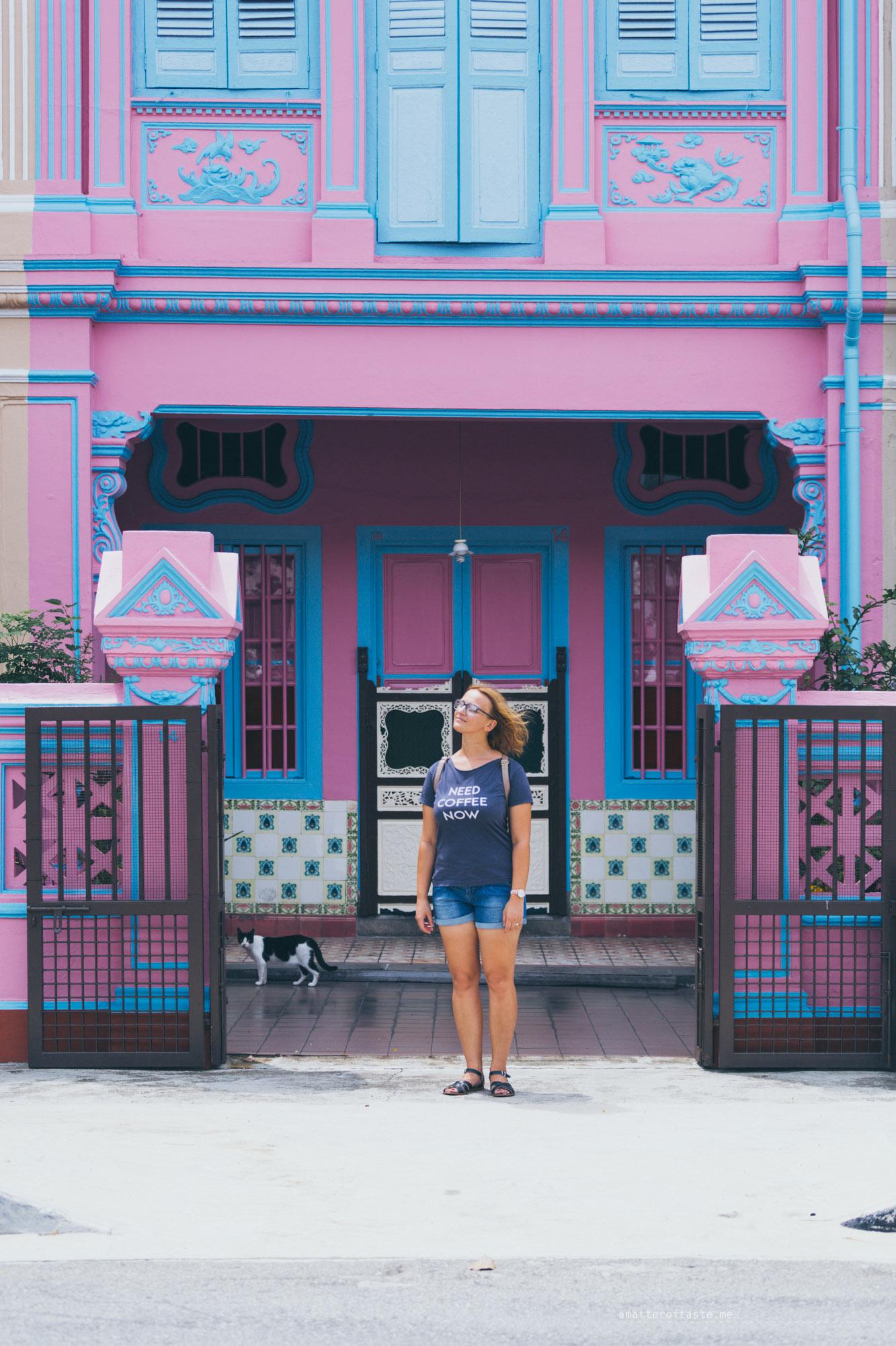 13-katong-joochiat-pinkhouse