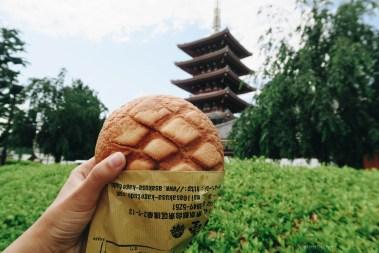 Japanese-food-29