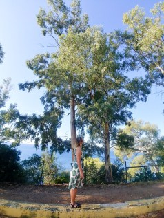 Southern France road trip gumtrees