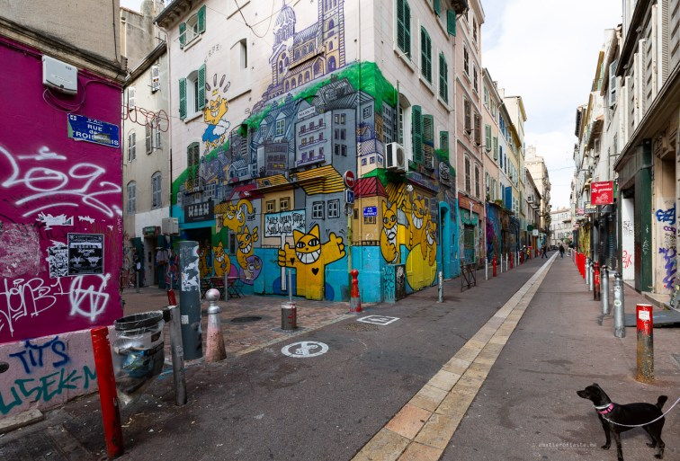 Street Art in Marseille cours julienne cats