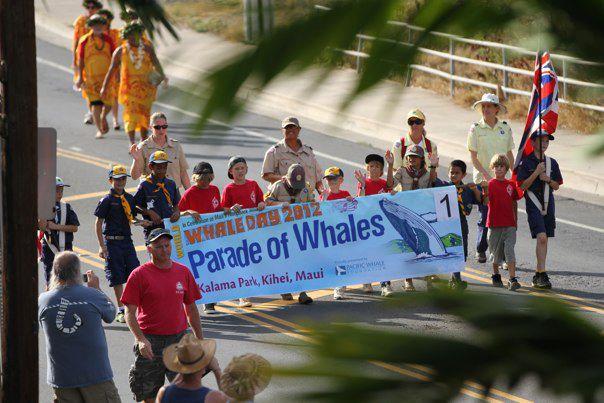 whale day on Maui
