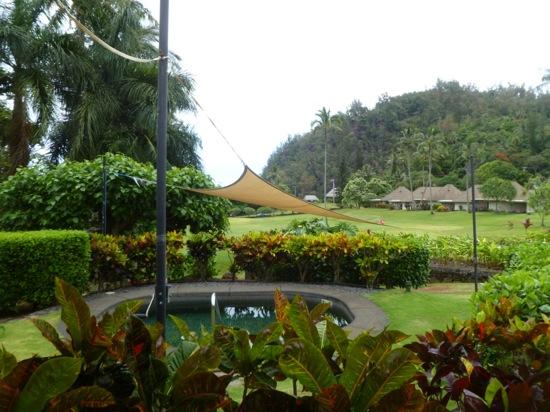 Copy of road to hana may 7th watsu pool spa