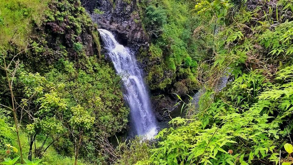 waterfalls hana maui 4