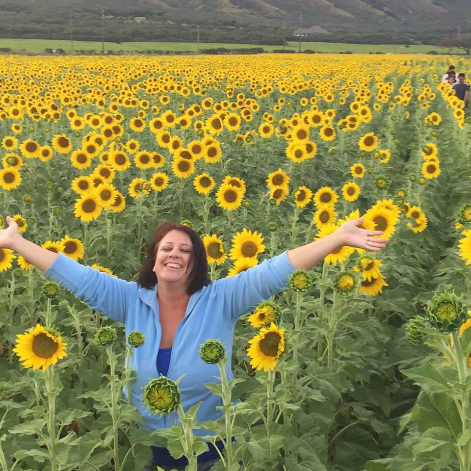 sunflowers-on-maui