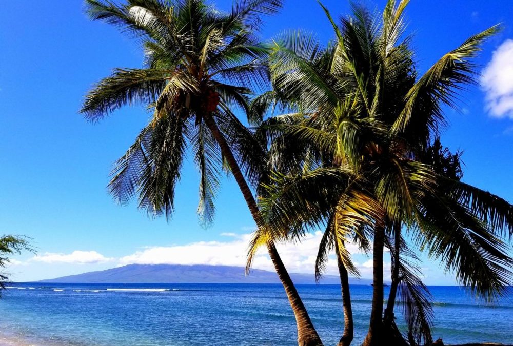 Stress in Paradise?  Living on Maui Has Its Price