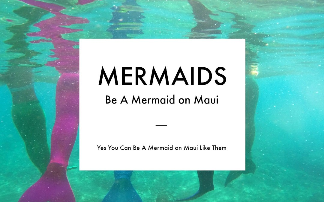A Day In The Life of Maui Mermaids