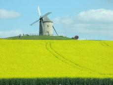 Windmill in Brittany - A lucky snap from a coach companion resulted in this fantastic photo.