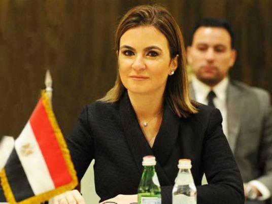Image result for Egypt's Investment Minister Sahar Nasr