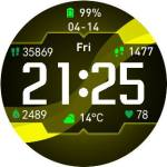 Amazfit Pace 'Wave' Watchface
