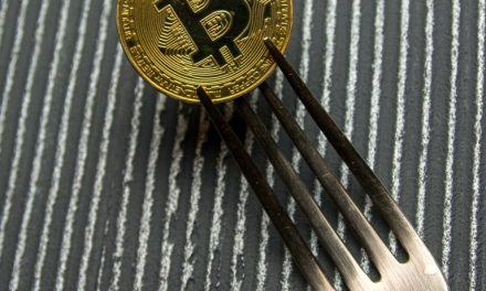 Bitcoin Cash Fork Watch: BCH Infrastructure Providers Reveal Contingency Plans