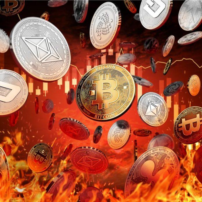 Markets Update: Major Crypto Markets Dump in Unison