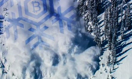 BCH Devs Discuss Securing Instant Transactions With the Avalanche Protocol