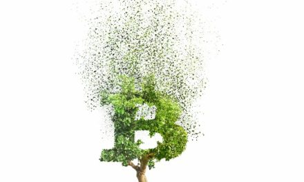 Blame Banks for Damaging the Environment – Not Bitcoin