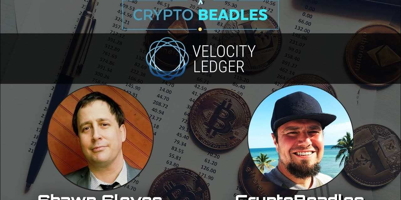 ⎮Velocity Ledger⎮Shawn Sloves breaks down what they bring to Blockchain and Crypto