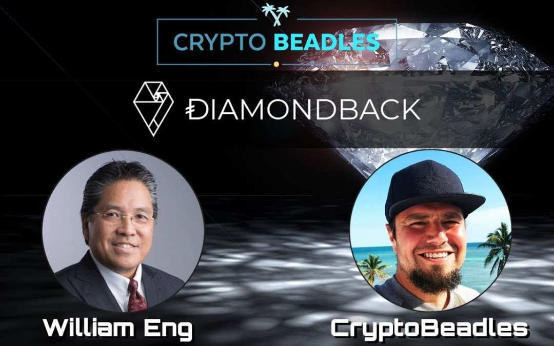 ⎮ Diamondback Holdings ⎮ Stable Cryptocurrency based on Diamonds? ⎮