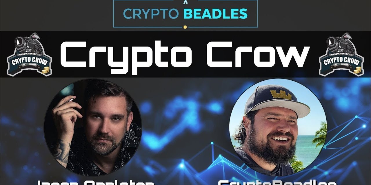 Crypto Crow asks me Monarch Wallet questions and more (Explicit language warning)