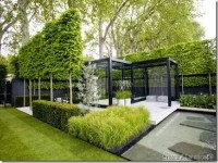 Interior Design for Home Ideas: Contemporary Backyard Design