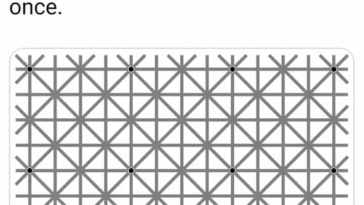 12 black dots illusion explained