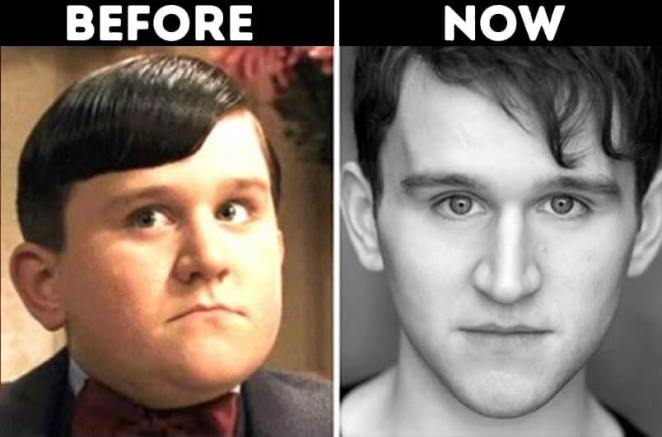 actors from Harry Potter now Dudley Dursley played by Harry Melling