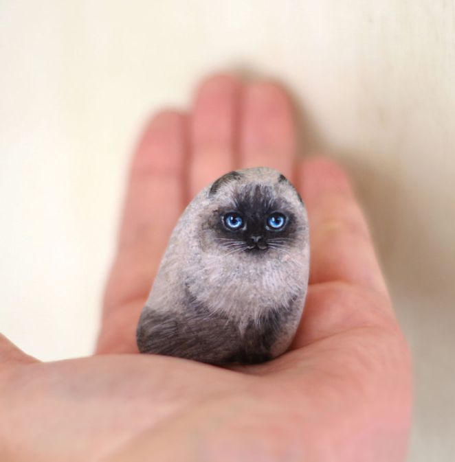Artist Paints Found Stones That Look Like Real Himalayan cat And I Hope They Make You Smile