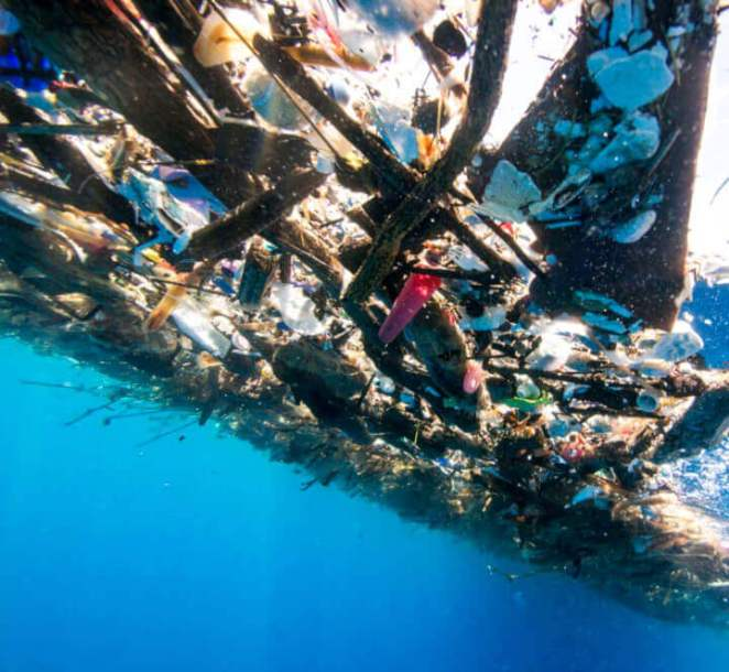 Excessive use of plastic pollution destroying the marine life