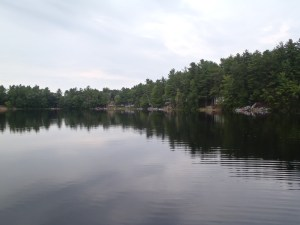 View of the houses and camps along the eastern shoreline of Deer Pond