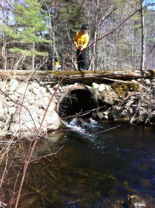 Joel tries to entice a trout in the pool below the culvert to take his baitfish