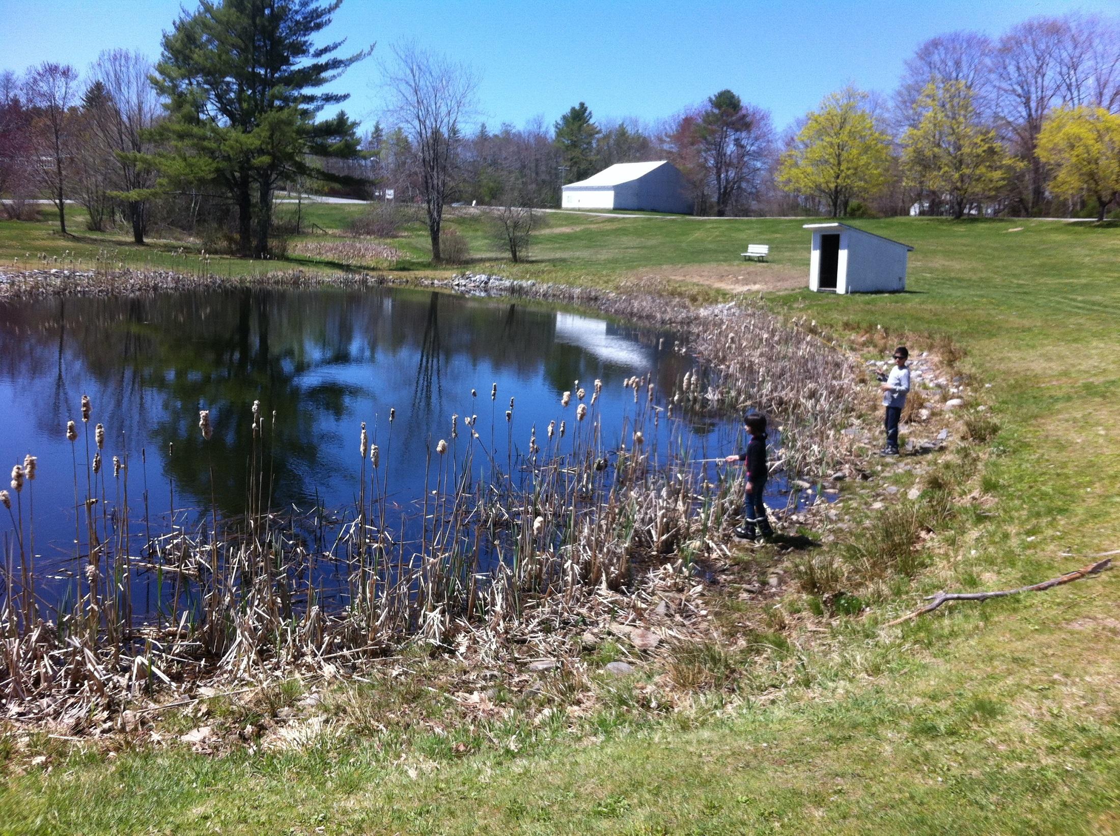 Trout fishing on hollis school memorial pond hollis for Trout farm fishing near me