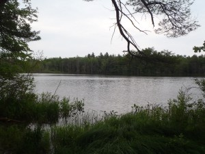 General view across Chaffin Pond