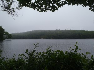 View of Sewell Pond from the access point