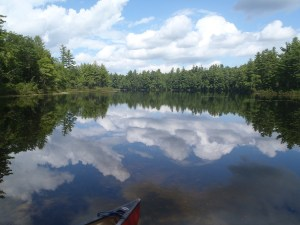 General view of Pickerel Pond