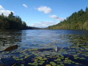 South Pond is gorgeous and remote, and yet quite accessible