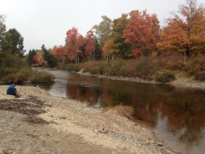 A wadable but COLD stream with perfect fall colors along its banks