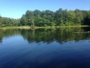 Little Purgatory Pond, Litchfield, Maine