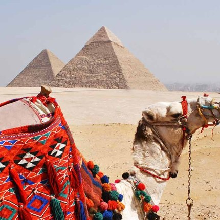 private TouThe Egyptian travel guider Cairo Luxor and Aswan.