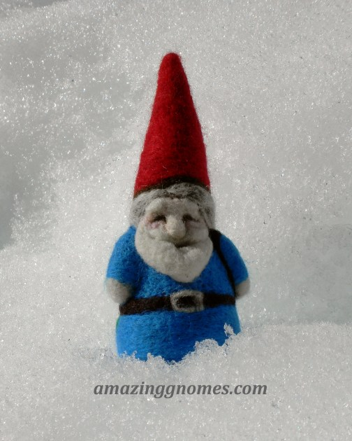 kootenay snow gnome 1