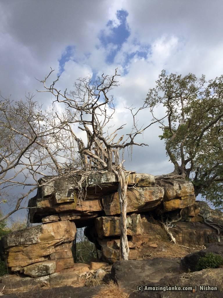Gopala Pabbatha Cave Complex