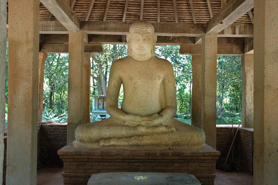 The Samadi Statue of Divulwewa