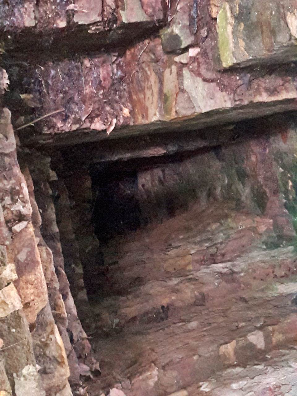 Dorawaka Caves Excavations in the prehistoric Site in middle of a rubber plantation