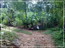 Mannakethi Ella Falls - Small junction near a house (Photo 2)