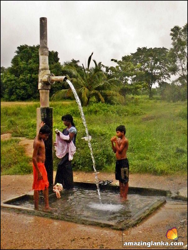 The flowing artesian well - Wahawa Hot Water Springs