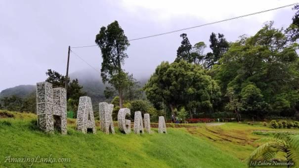 Hakgala Botanical Garden - හක්ගල උද්භිද උද්යානය