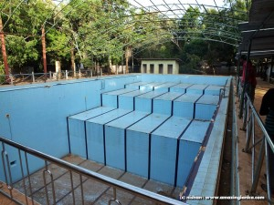 22 feet deep LTTE swimming pool on the Kilinochchi - Mulativu Route