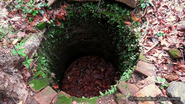 1st ancient well built with bricks out of the 7 wells found at the ruins of the ancient aramic complex this complex of Padaviya Deiyanne Kanda Archaeological Site