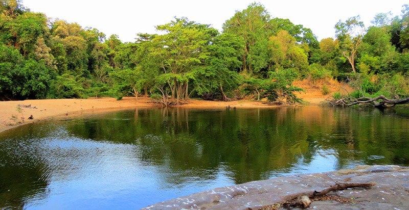 Bathing spot where 5 crocs lived on the way to Budupatuna Ruins