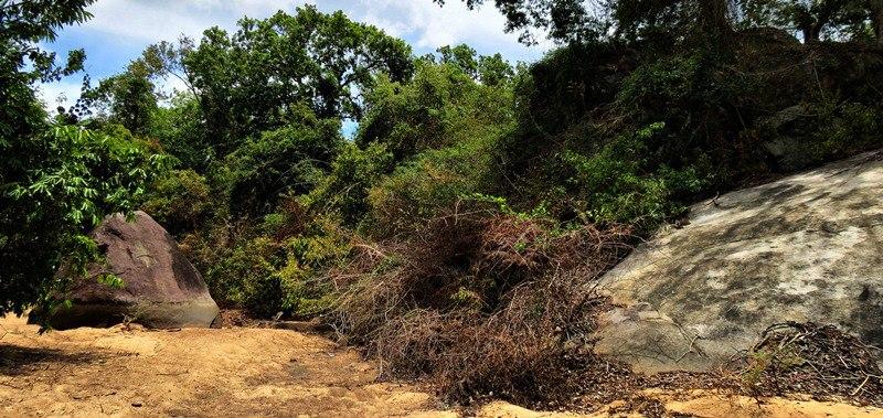 """goyam kole gala"" in the middle of the river where the Budupatuna Ruins lies"