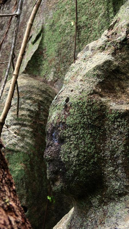 Wila Oya Budupatuna Ruins