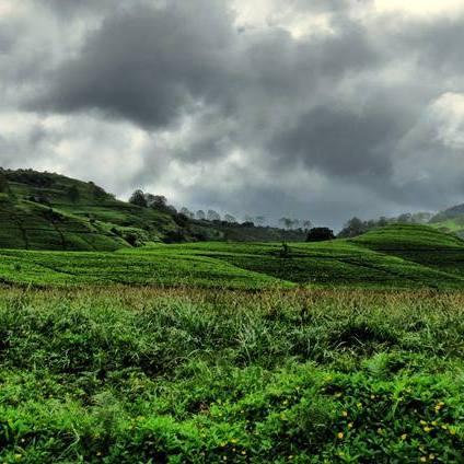 Wewalthalawa Plateau