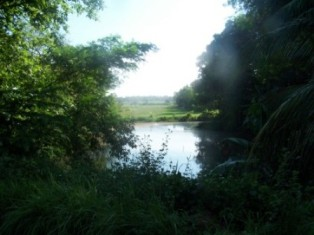 Kaduruwela Bata 3, 2 Ela area