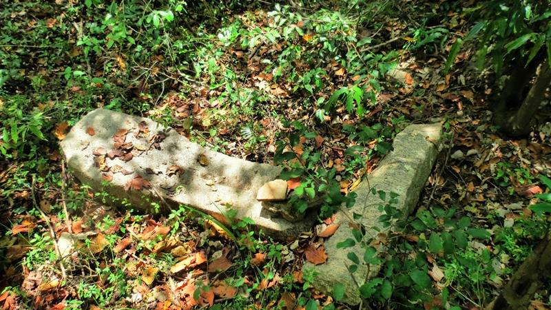 Ruins of the site about 1 km away from the ancient Kayyankerni stone bridge